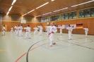 Training :: Taekwon-Do Training_8