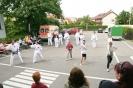 Taekwon-Do Vorfuehrung Lebenshilfe Schwabach-Roth eV_5