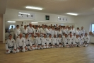 Taaekwon-Do Lehrgang in Lichtenfels