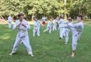 Taekwon-Do-Training im Stadtpark Schwabach_21