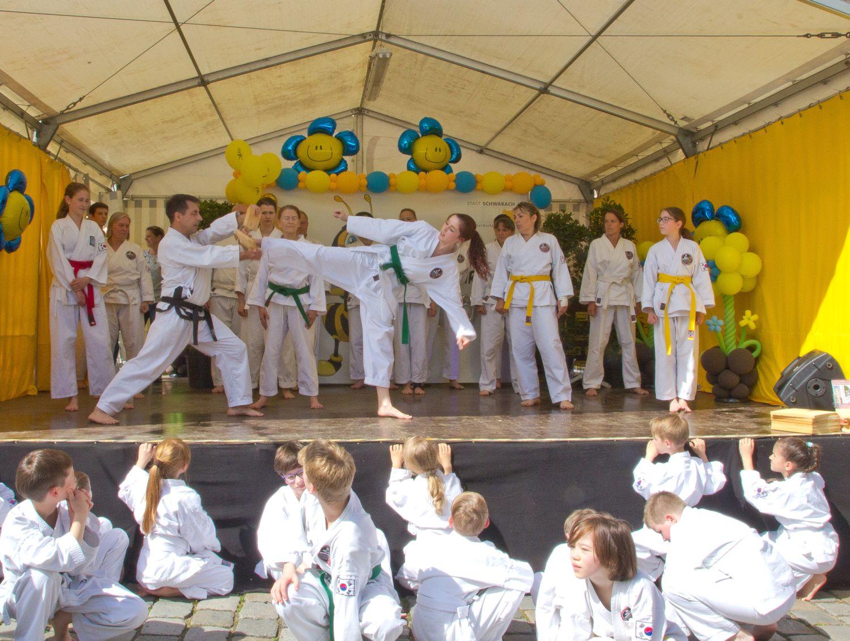 Traditional taekwondo centers